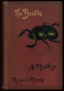 Marsh_beetle_1900