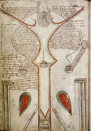 Bodleian Libraries, útero, manuscrito iluminado